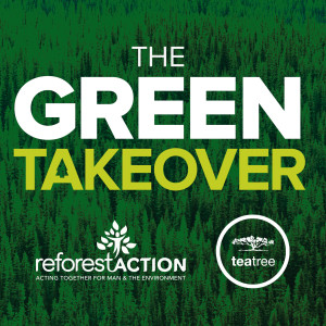 Paul Mitchell #GreenTakeover Tea Tree Giveaway