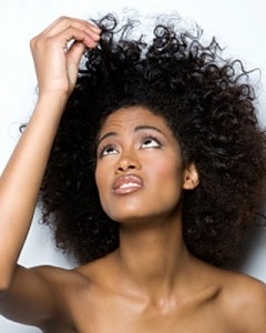 Frizz Fro How To Fix Frizzy Hair