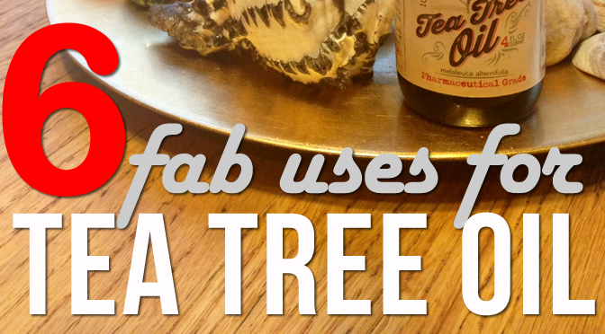 6 fab uses for tea tree oil feature