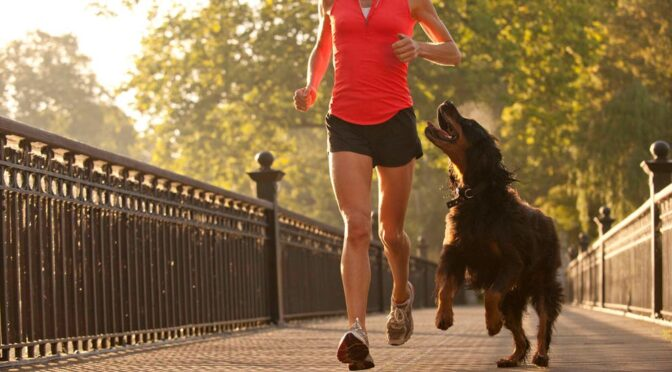 How to Include Your Pets in Your Exercise Regime